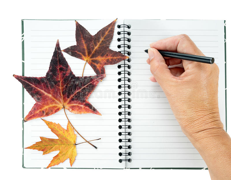 Journal, diary - memories with dried, pressed leaves. royalty free stock images