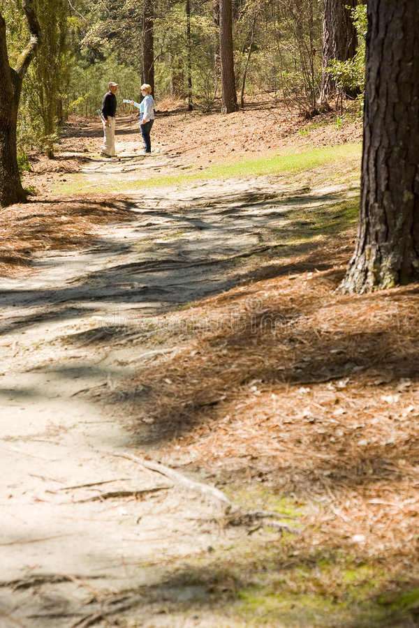 Journal ensoleillé de promenade de nature photos libres de droits
