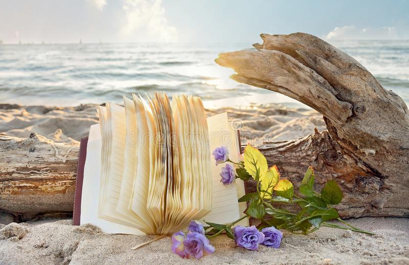 Journal et roses en sable de plage photographie stock libre de droits