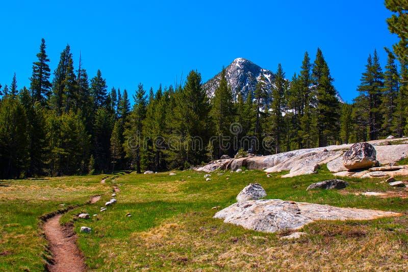 Journal Pacifique de crête le long de fourchette de Lyell de rivière de Tuolumne, Yosemite images libres de droits