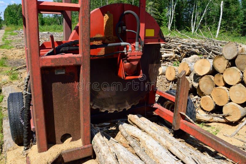 Journal Slasher med nytt snittet och travt trä royaltyfria foton