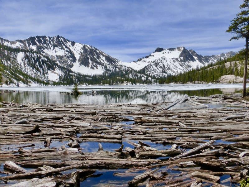 Journaldriftstopp på sjön för högt berg arkivbilder