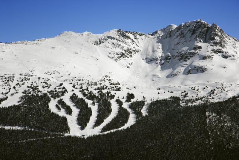 Journaux de station de sports d'hiver sur la montagne. image libre de droits