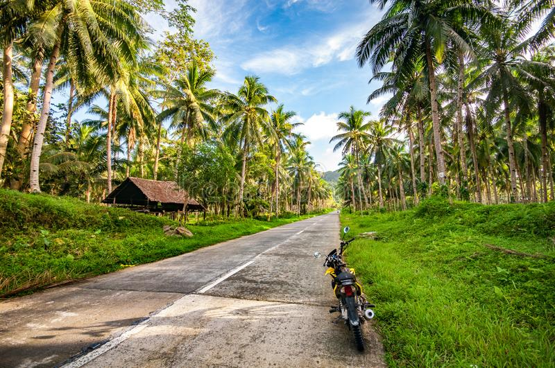 A journey straight into paradise. What I would give to be back on the tropical island paradise of Siargao in The Philippines and to be cruising down this road stock photography