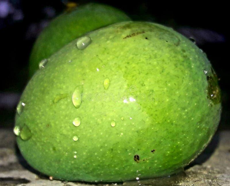Jours d'été chauds de fruit de mangue image libre de droits