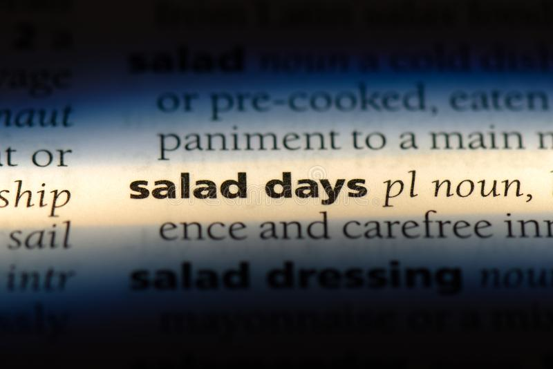 Jours de salade photographie stock