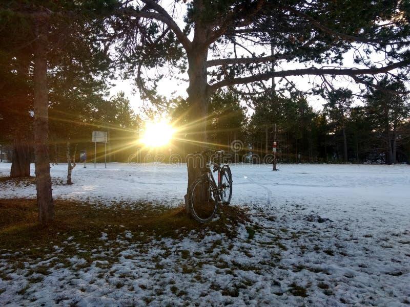 Jours ensoleillés en Alta Finnmark Norway images stock