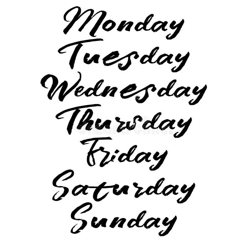 Jours manuscrits de semaine Calligraphie moderne de brosse illustration de vecteur
