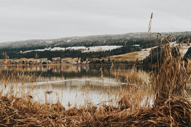Joux湖秋天风景  库存图片