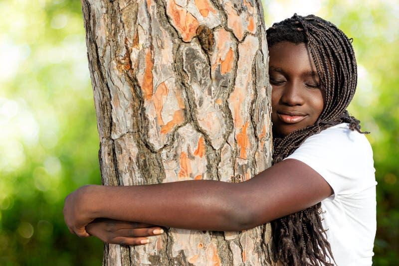 Jovem africano com tranças que abraça a árvore fotografia de stock royalty free