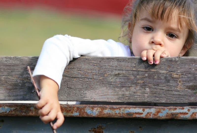 Jovem criança atrás da cerca imagens de stock royalty free