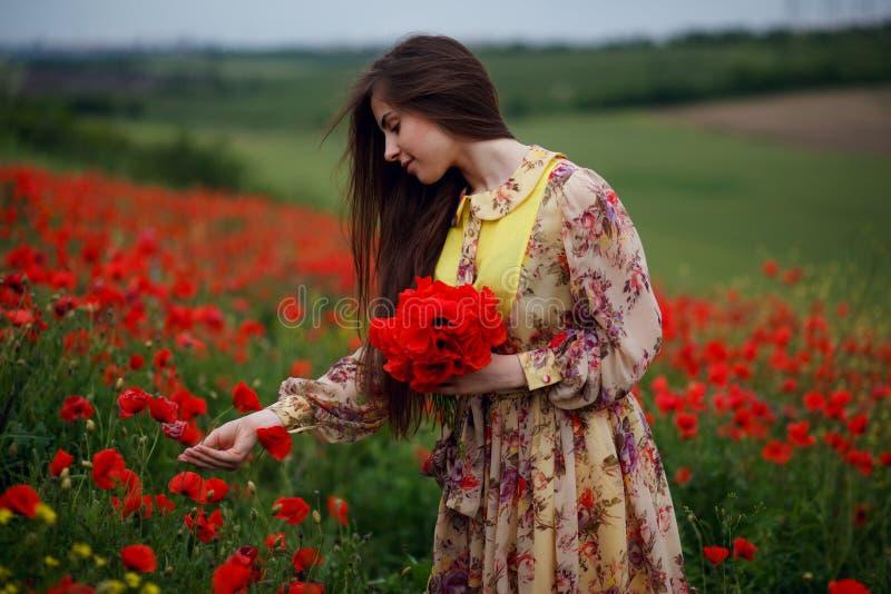 A jovem mulher alegre com de cabelos compridos, toque doma uma flor das papoilas, levantando em um campo de flores, fundo das flo fotografia de stock royalty free