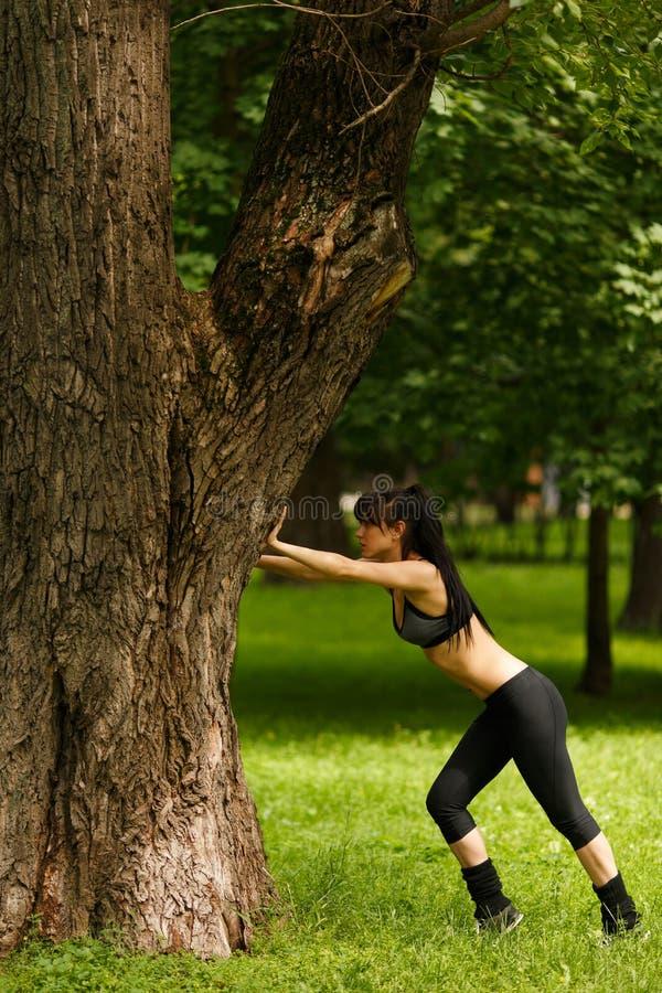 Jovem mulher atlética que estica perto da árvore grande no dia de verão imagens de stock