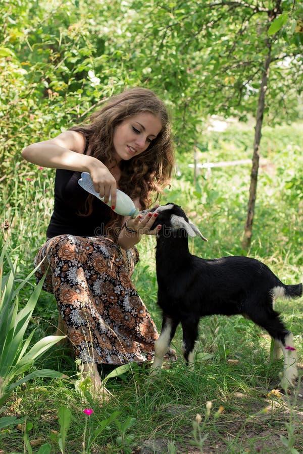 A jovem mulher atrativa está alimentando uma cabra do bebê com leite do fotos de stock