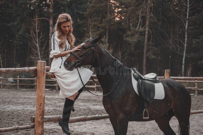 A jovem mulher bonita e elegante que veste o vestido está afagando o cavalo no rancho imagem de stock