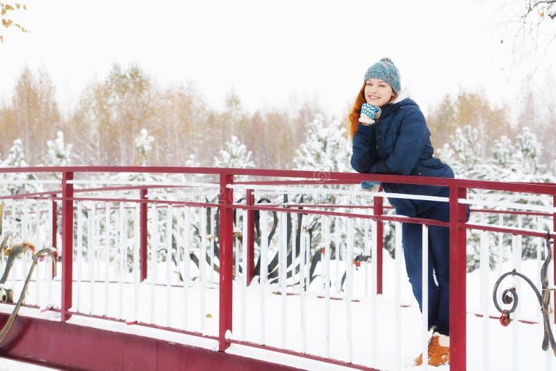 A jovem mulher bonita está na ponte no parque do inverno fotografia de stock