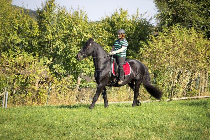 A jovem mulher bonita monta seu cavalo preto fotos de stock royalty free