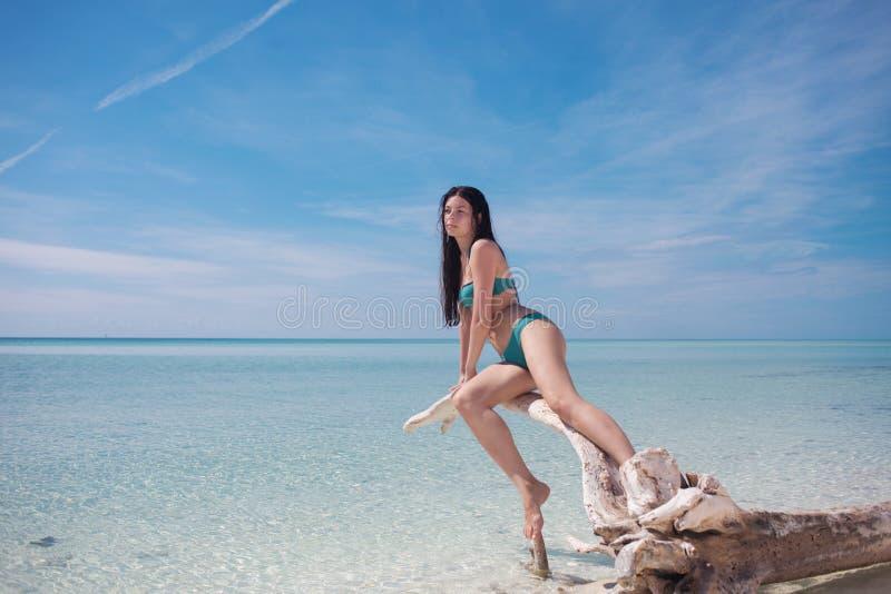 Jovem mulher bonita no biquini no oceano Morena atrativa nova no roupa de banho azul na água azul fotos de stock royalty free