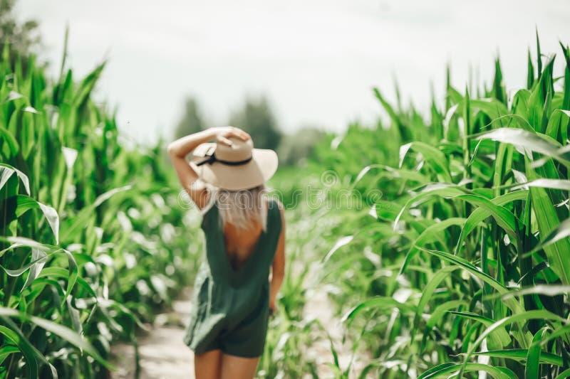 Jovem mulher bonita no chapéu de palha que anda no campo de milho Vista traseira Foco seletivo no milho fotografia de stock royalty free