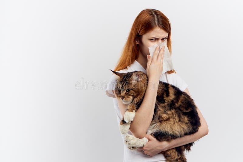 A jovem mulher bonita no fundo isolado branco guarda um gato, uma alergia fotografia de stock