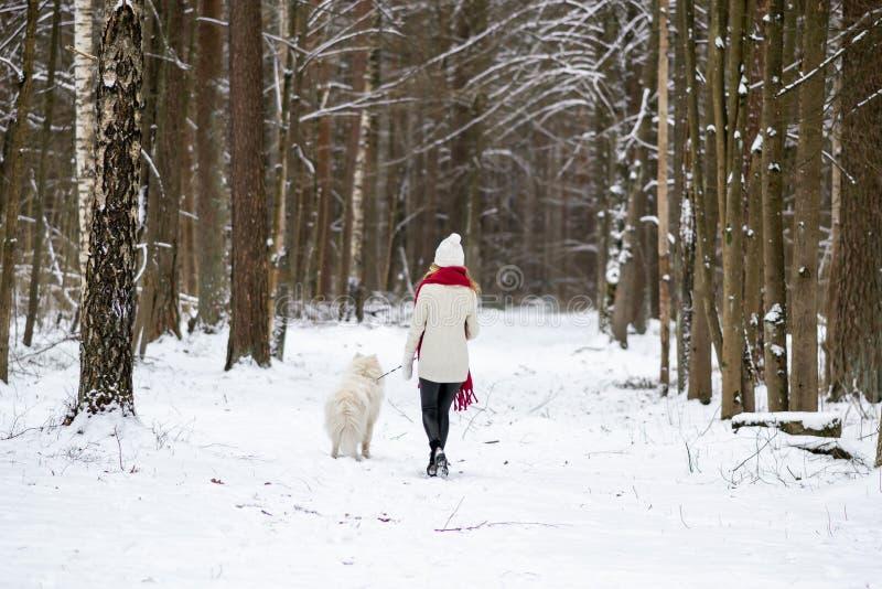 Jovem mulher bonita no inverno nevado Forest Park Walking Playing com seu cão fotos de stock