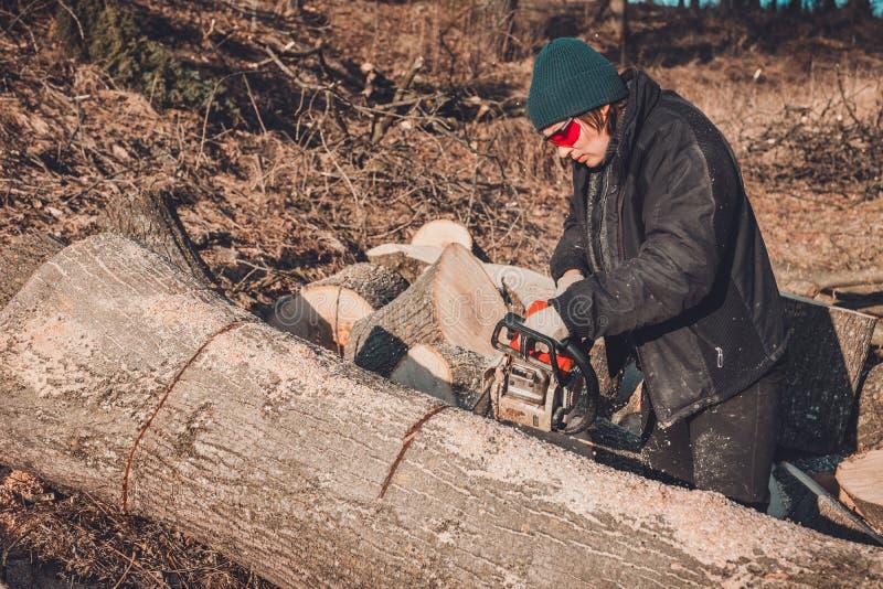 A jovem mulher bonita nos vidros corta uma grande árvore da cinza na madeira para o inverno fotografia de stock royalty free