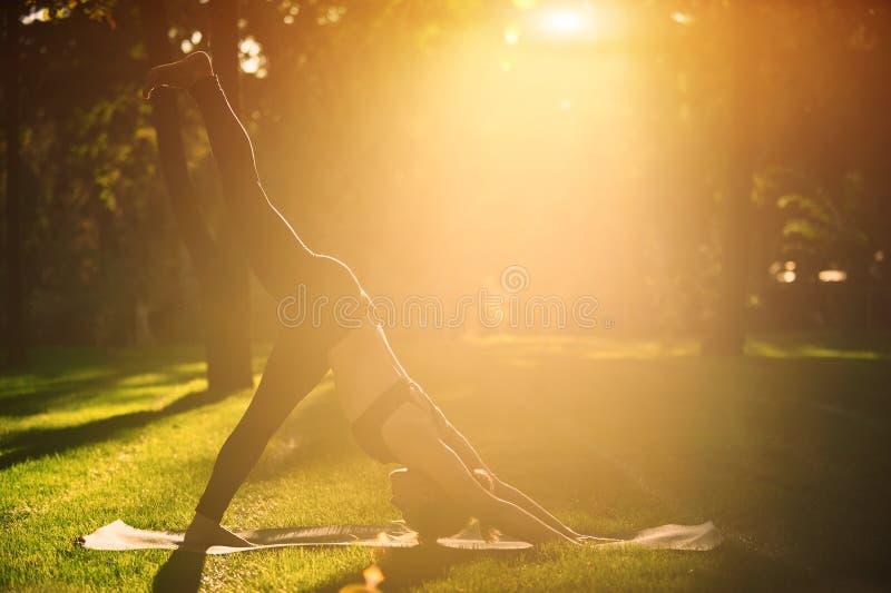 A jovem mulher bonita pratica o pada Adho Mukha Shvanasana do eka do asana da ioga - uma pose descendente do cão do pé no parque fotografia de stock
