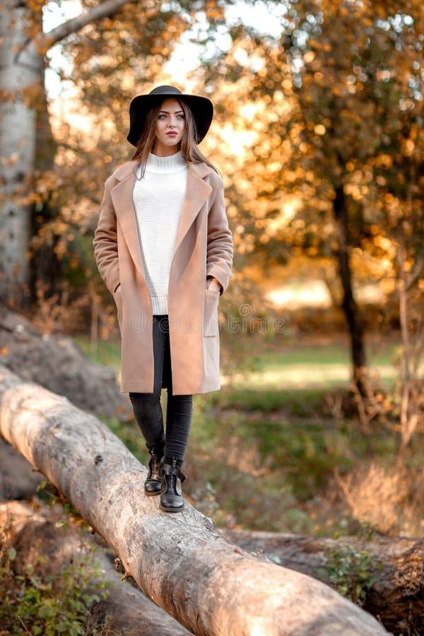 Jovem mulher bonita que levanta no parque no outono fotografia de stock