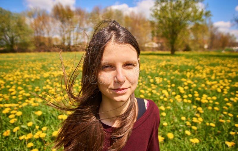 Jovem mulher bonita que relaxa em um prado com o sol de muitos dentes-de-leão na primavera Retrato disparado com ventoso, breezil fotografia de stock