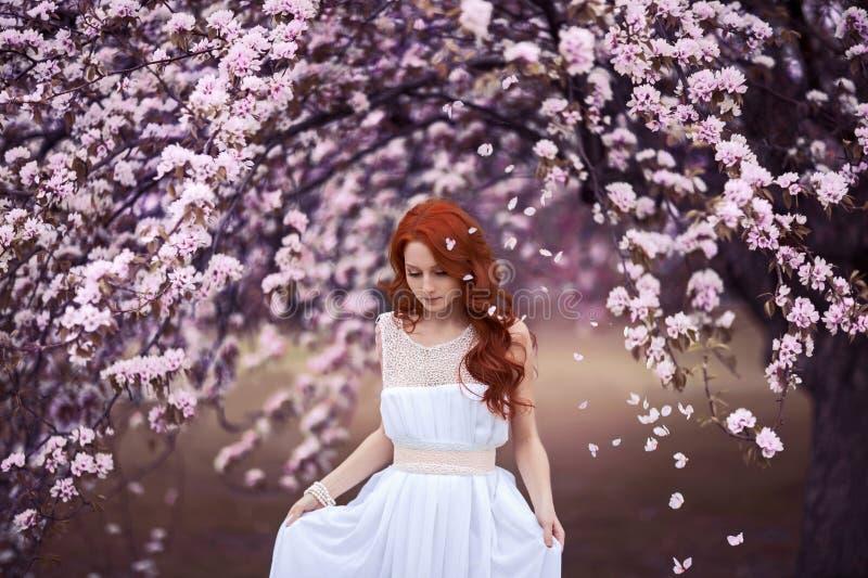 Jovem mulher bonita sob a árvore de florescência imagens de stock