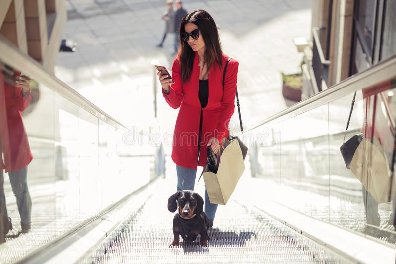 Jovem mulher da forma que anda com seu cão pequeno ao texting com seu smartphone na rua na cidade imagens de stock