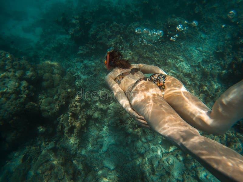 A jovem mulher de Freediver nada debaixo d'?gua com tubo de respira??o e aletas imagens de stock royalty free