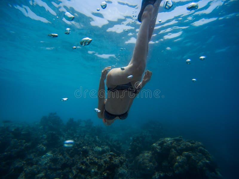 A jovem mulher de Freediver nada debaixo d'?gua com tubo de respira??o e aletas fotos de stock royalty free