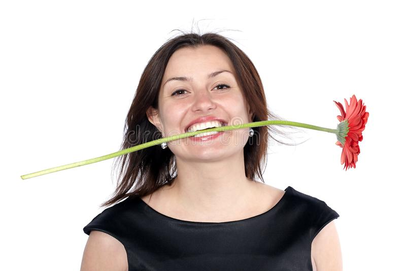 A jovem mulher de sorriso no vestido preto guarda uma flor do gerbera nos dentes, isolados sobre o fundo branco imagem de stock royalty free