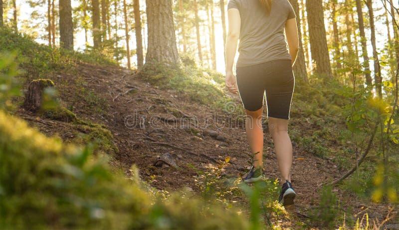 Jovem mulher desportiva que anda no trajeto de floresta no por do sol fotografia de stock royalty free