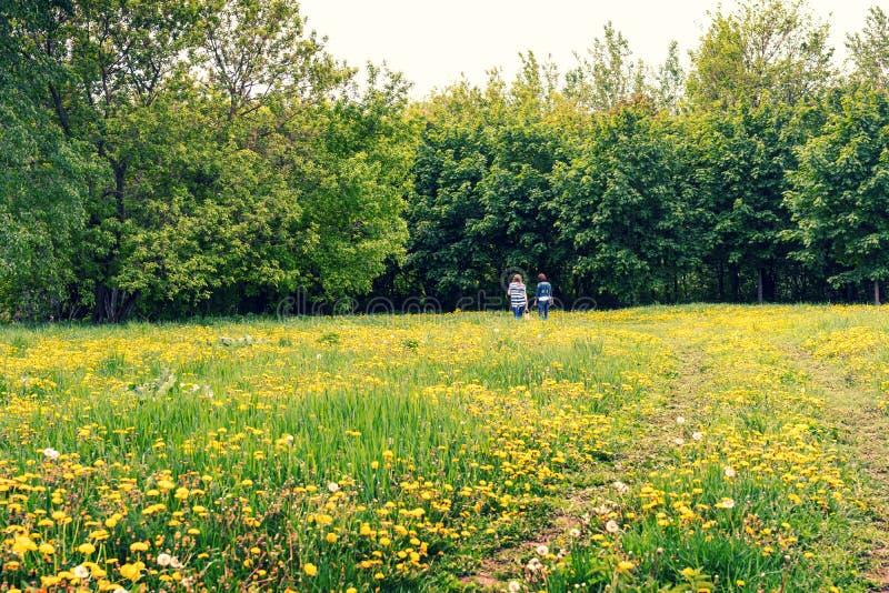 A jovem mulher dois em dentes-de-leão verdes e amarelos coloca na primavera o parque fotos de stock