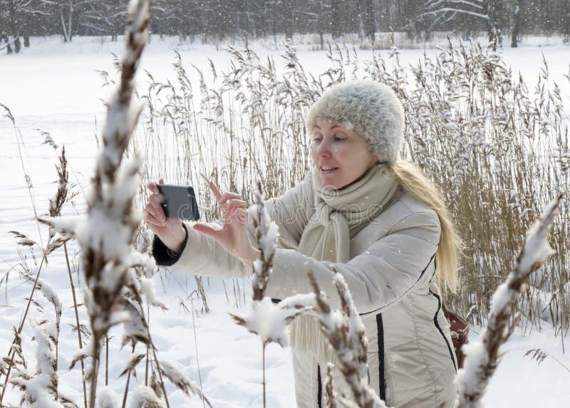 A jovem mulher em um revestimento branco fotografa bastões do inverno da costa do lago da floresta no telefone fotografia de stock royalty free