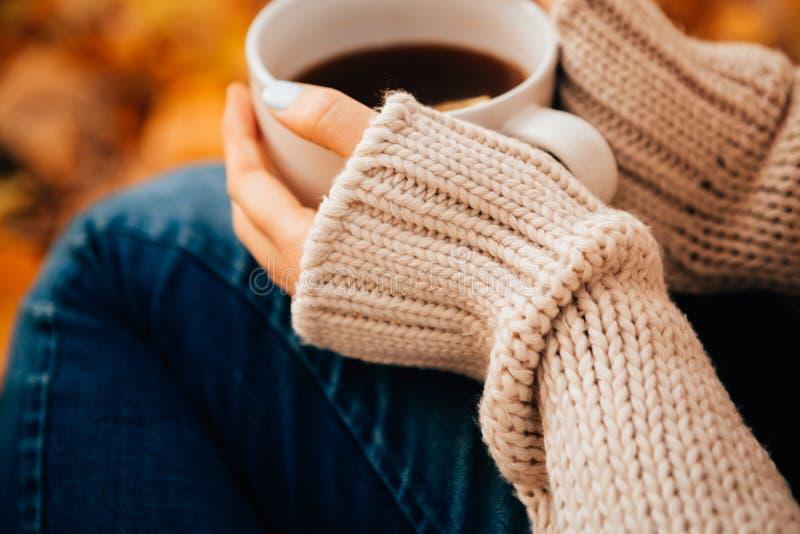 Jovem mulher em uma camiseta e nas calças de brim que relaxam o chá da bebida no fundo do outono imagem de stock