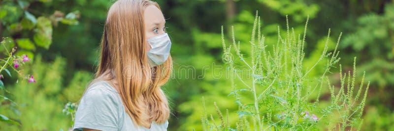 Jovem mulher em uma máscara médica devido a uma alergia à BANDEIRA do ragweed, formato longo fotografia de stock royalty free