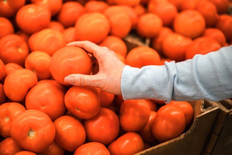 A jovem mulher escolhe tomates frescos no supermercado fotos de stock royalty free