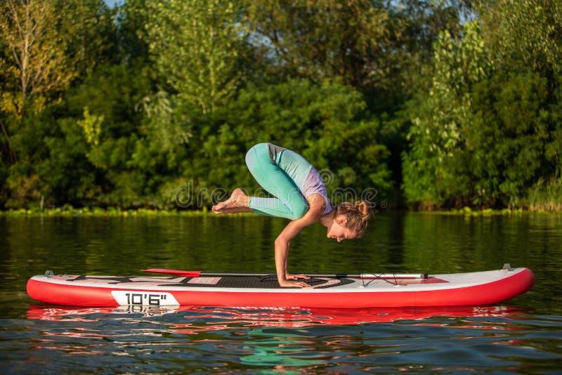 A jovem mulher está fazendo a ioga em um SUP da placa de pá do suporte acima em um lago ou em um rio bonito fotos de stock royalty free