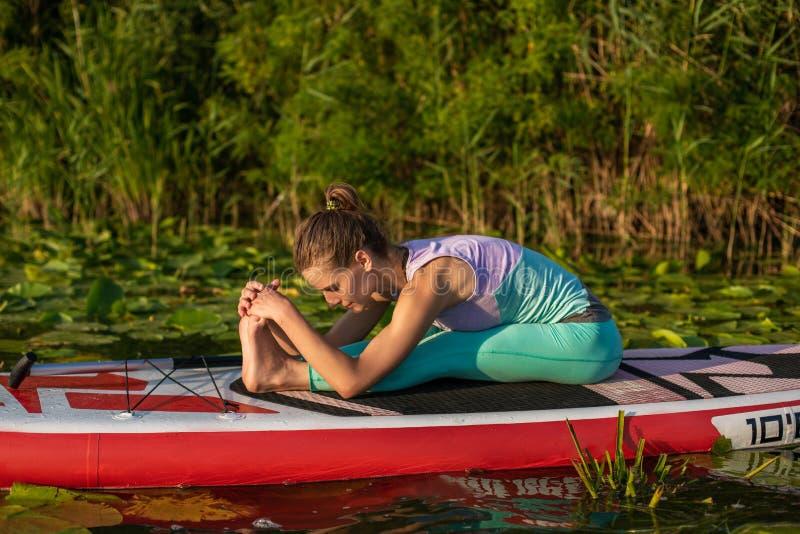 A jovem mulher está fazendo a ioga em um SUP da placa de pá do suporte acima em um lago ou em um rio bonito fotografia de stock royalty free