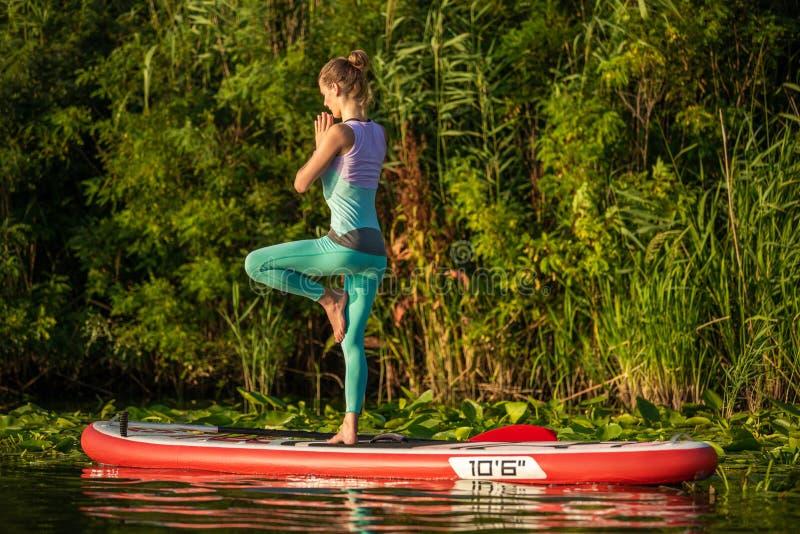 A jovem mulher está fazendo a ioga em um SUP da placa de pá do suporte acima em um lago ou em um rio bonito imagem de stock
