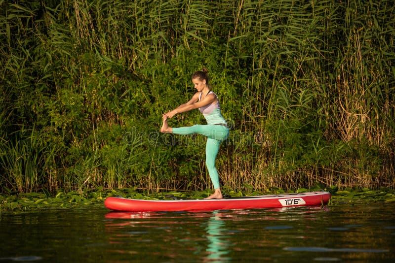 A jovem mulher está fazendo a ioga em um SUP da placa de pá do suporte acima em um lago ou em um rio bonito imagens de stock