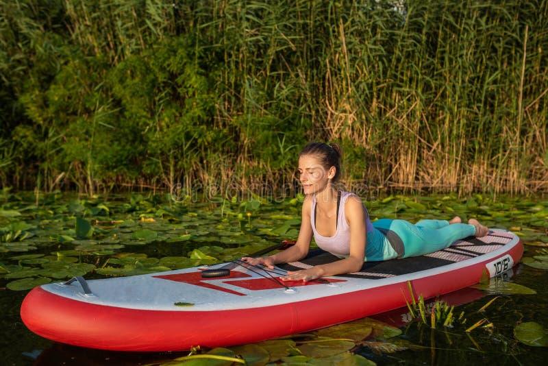 A jovem mulher está fazendo a ioga em um SUP da placa de pá do suporte acima em um lago ou em um rio bonito foto de stock royalty free