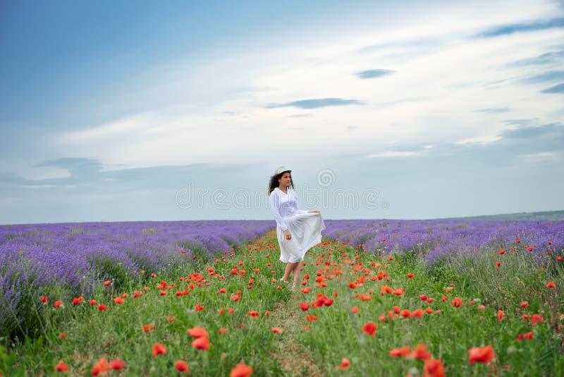 A jovem mulher está no campo de flor da alfazema, paisagem bonita do verão imagem de stock royalty free