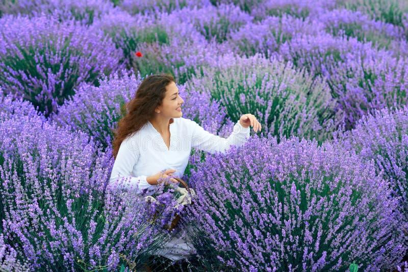 A jovem mulher est? no campo de flor da alfazema, paisagem bonita do ver?o imagens de stock royalty free
