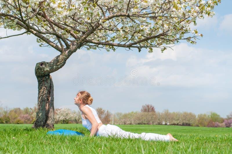 A jovem mulher est? praticando a ioga, fazendo o exerc?cio da cobra, pose de Bhujangasana foto de stock royalty free