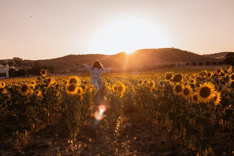 Jovem mulher feliz com os braços abertos de sua dança traseira em um campo do girassol no por do sol fotografia de stock royalty free