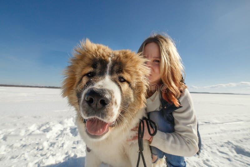A jovem mulher feliz e seu cão-pastor caucasiano estão abraçando na parte externa da neve imagens de stock